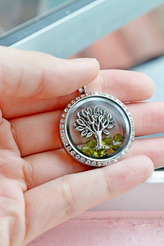 Living Locket Memory Glass Locket JewelryStainless Steel   Etsy