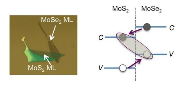 Ultrafast Charge Separation and Indirect Exciton Formation in Molybdenum Disulfide and Molybdenum Diselenide van der Waals Heterostructure #STEM #Science #NSF #Research