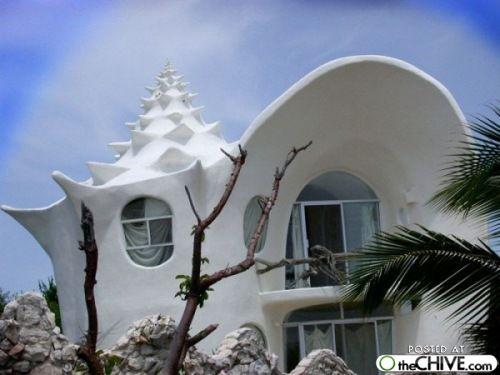 shell houseSea Shells, Dreams Home, House Design, Beach House, The Ocean, Seashells, Shells House, Isla Mujeres, Unusual House