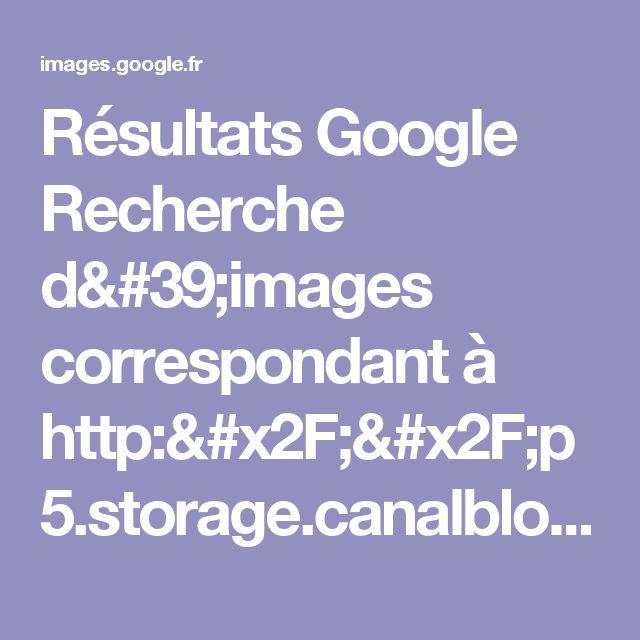 Résultats Google Recherche d'images correspondant à http://p5.storage.canalblog.com/54/90/567046/39165526.jpg