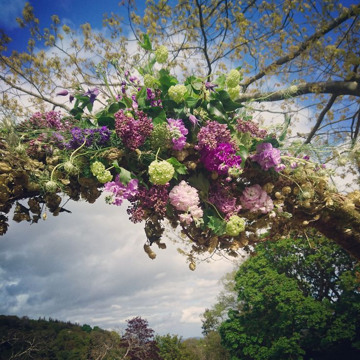 The Queensferry Flower Company. Hops and flower arch at Fingask Castle.