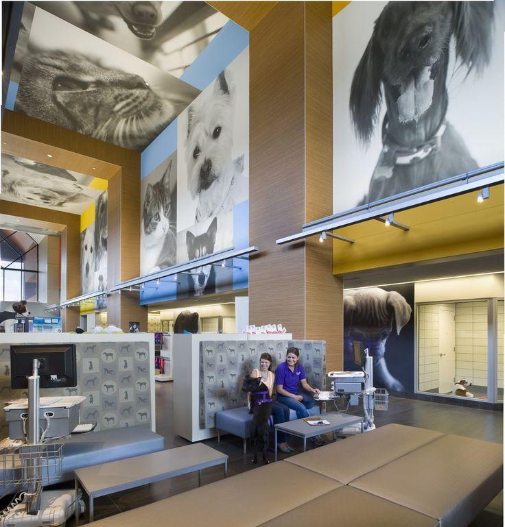 SPCA of Texas - Dallas, TX, United States. The Jan Rees-Jones Animal Care Center adoption lobby
