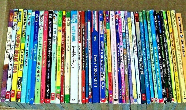 Huge lot 42 teachers chapter books 2nd 3rd 4th grade boys