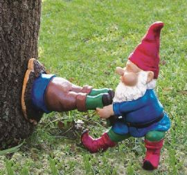 Garden Gnome Stuck in Tree