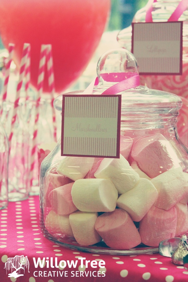Baby Shower Lollies ~ Best chick themed baby shower images on pinterest