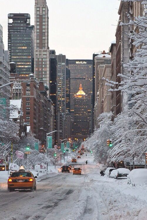 New York under the snow