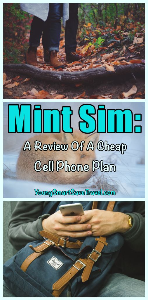 Mint Sim: A Review of a Cheap Cell Phone Service Plan   YoungSmartSaveTravel