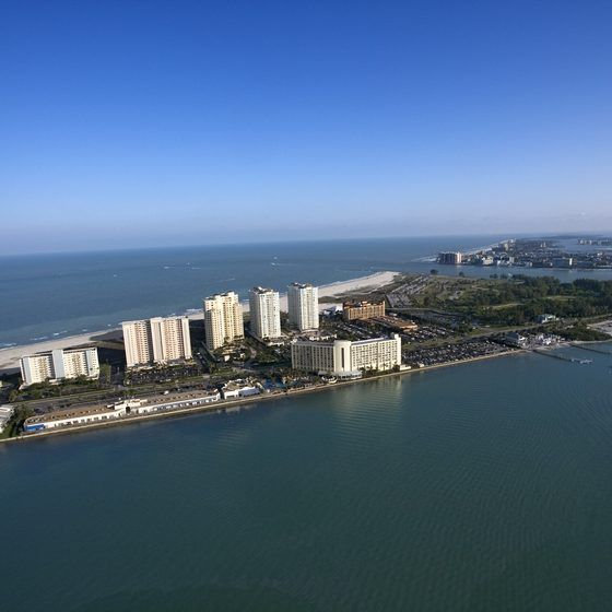 Brandon is located near Clearwater's award-winning beach.