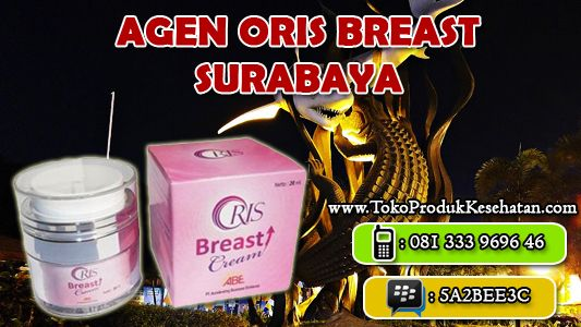 Krim Pengencang Payudara Oris Breast Cream sudah hadir langsung di Kota Surabaya. ORIS BREAST CREAM adalah kosmetik Krim Pengencang Payudara yang mengandung bahan herbal, sangat tepat dipilih untuk solusi untuk memelihara dan membantu memulihkan kembali payudara ke bentuk yang di idam-idamkan oleh setiap wanita, kencang, padat, berbentuk indah, dan sehat.  Baca selengkapnya dan klik disini: http://tokoprodukkesehatan.com/agen-oris-breast-cream-surabaya-jual-krim-pengencang-payudara-murah/