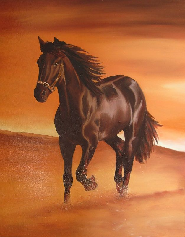 Koń. Olejny na płótnie. W. Podlecka