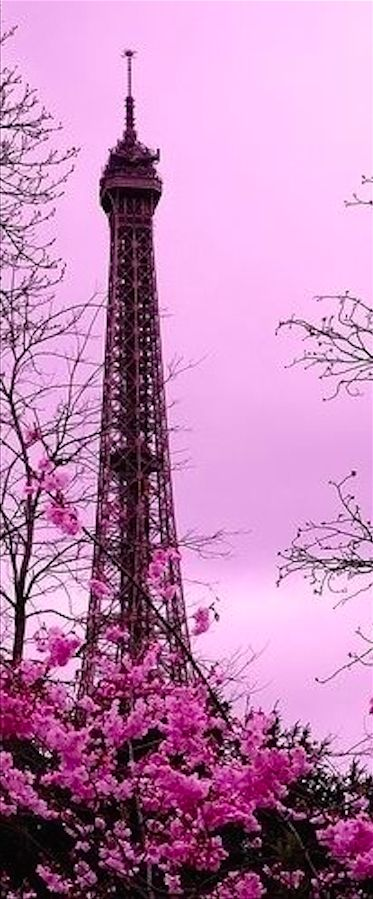Uno de mis objetivos es vivir un semestre en Paris ya que es una de mis ciudades preferidas y puedo practicar mi francés