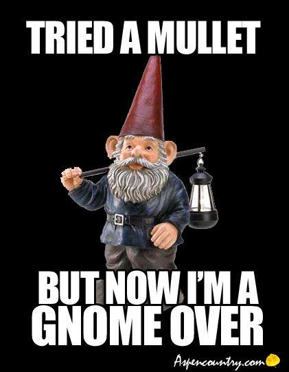 Gnombies Garden: 170 Best Gnome Way! Images On Pinterest