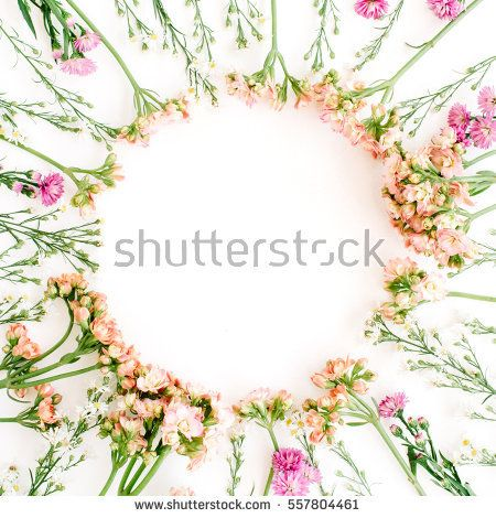 Wreath frame made of wildflowers. Flat lay, top view. Valentine's background