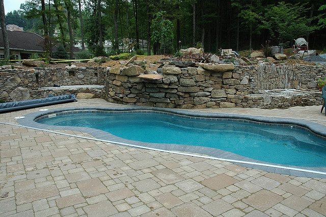 Swimming Pool Design Wish This Was Your Pool Freeform Pool Designs