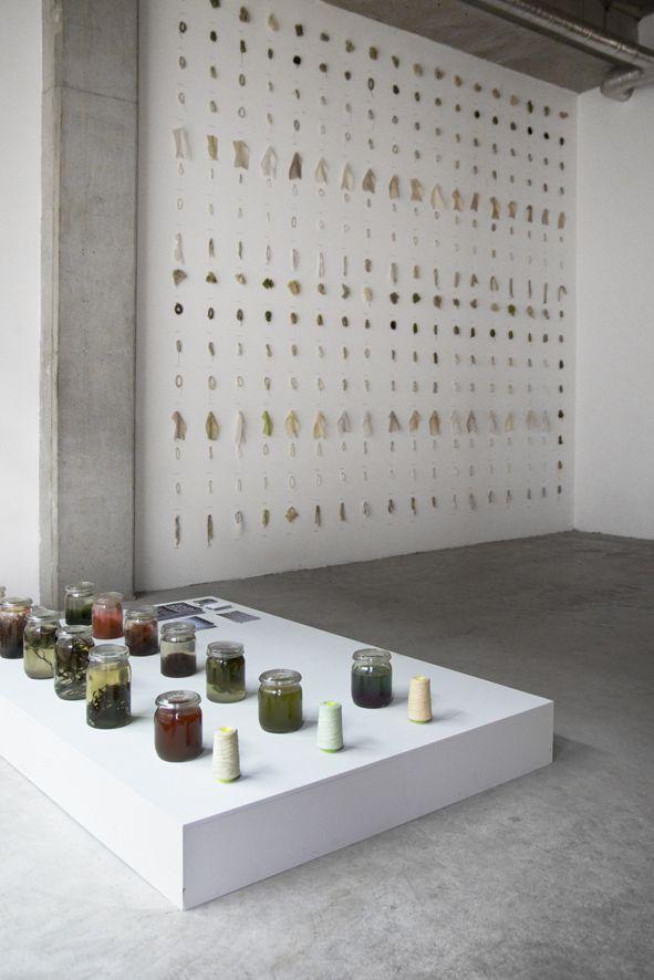 Colors of the Oosterschelde   Project by Xandra van der Eijk & Nienke Hoogvliet   Natural textile dye made of seaweed
