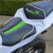 Kawi Girl gel seat for ninja 300