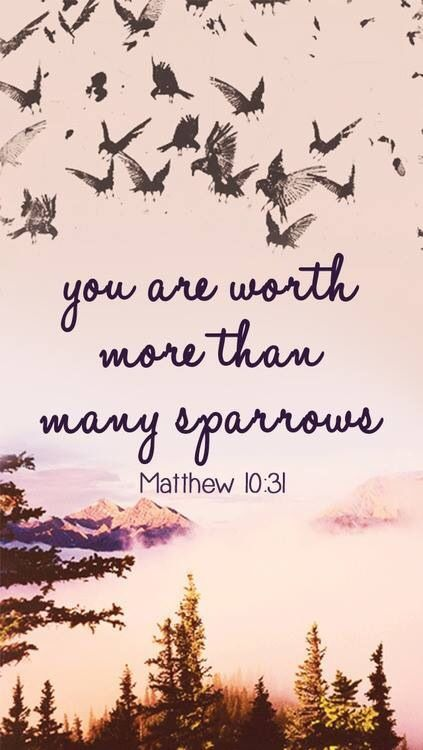Matthew 10:31 (NIV) - So don't be afraid; you are worth more than many sparrows. DON'T WORRY ABOUT TOMORROW. :)