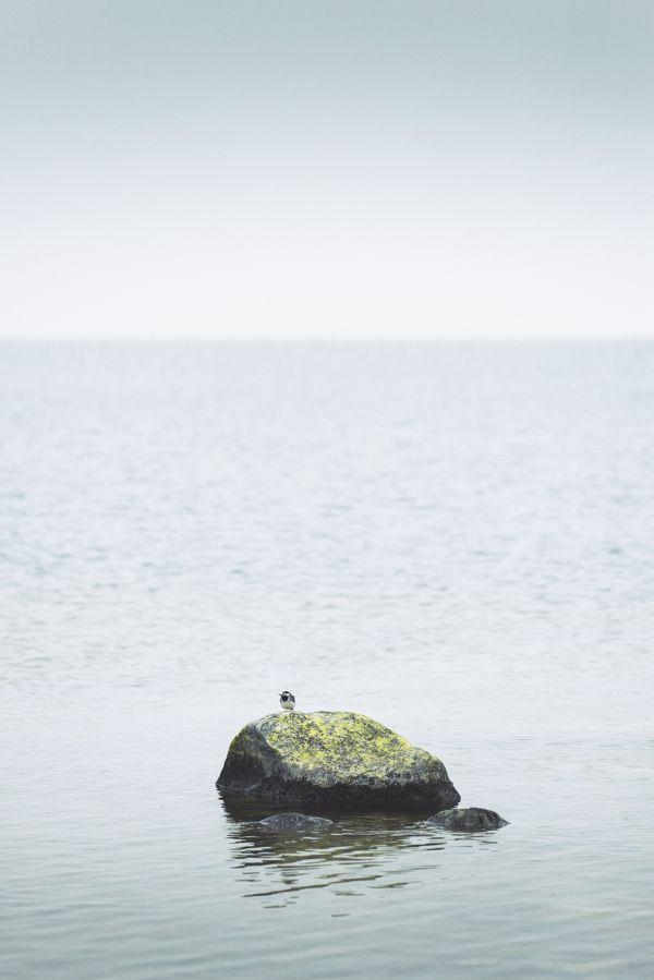 Last day on Kökar by Nina Lindfors, via Behance