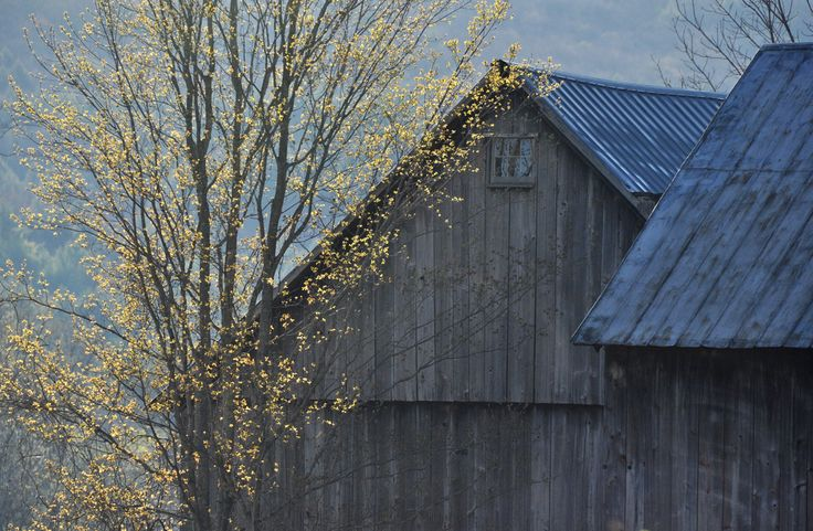 Old new england barn barns pinterest new england for New england barns for sale