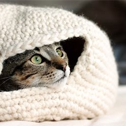 Free crochet pattern to make your cat a cozy nest for the winter. Follow link to English, thanks so!! Loving this for the kitties xox