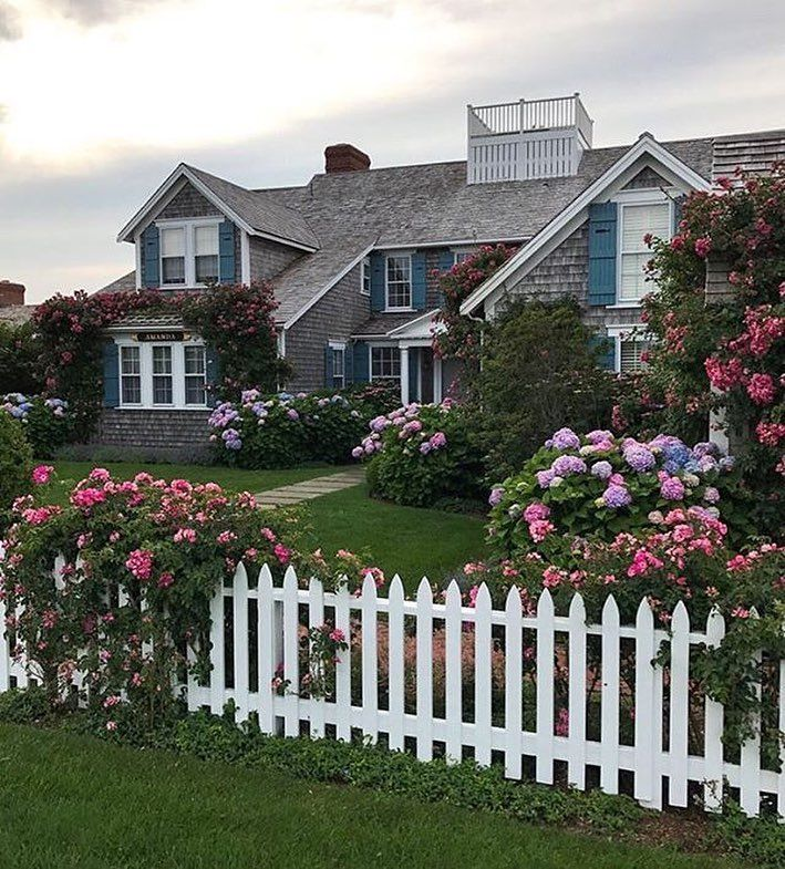 A taste of Nantucket, where hydrangeas are to be found everywhere, within every landscape!! @privatenewport #mycountryhome #cottagestyle #newengland #newenglandlife