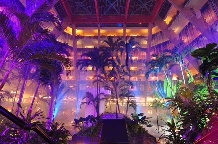 Want to discover a magical and entertaining place? See you at the Oasis #Cancun!  #OasisLovesU