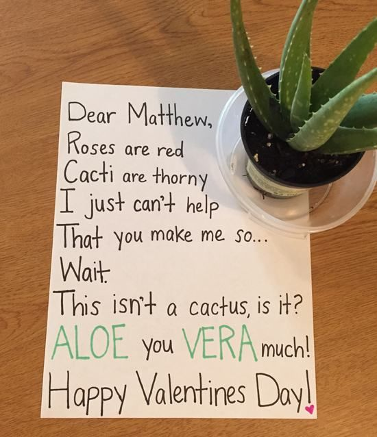 Roses are red, cacti are thorny, I just can't help that you make me so...WAIT, this isn't a cactus, is it?  ALOE you VERA much!  Happy Valentine's Day!
