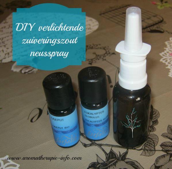 Deze diy zuiveringszout neusspray is een eenvoudige remedie die helpt bij een verstopte neus en gelijk verlichting geeft.