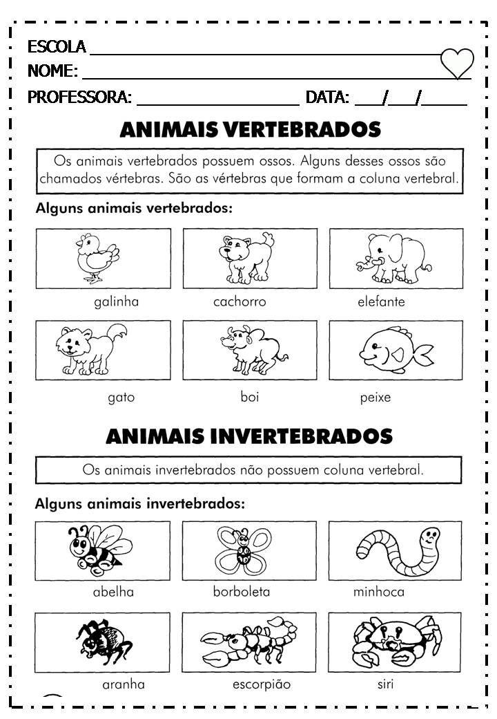 """Coleção """" No Mundo da Alfabetização"""" . Editora Fapi"""