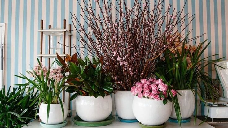 From flowers to anchors, here are the Northern Beaches design trends to take note of.
