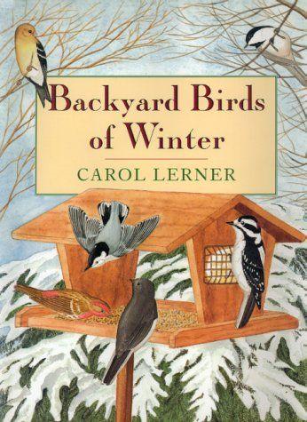preschool bird books 13 best images about creation day 5 fish amp birds 170