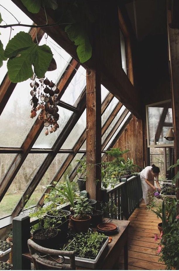 Love this idea. I always wanted a inside garden. Organic all the way.