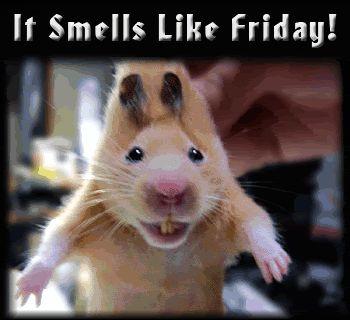 It smells like Friday days friday gif happy friday days of the week weekdays friday greeting