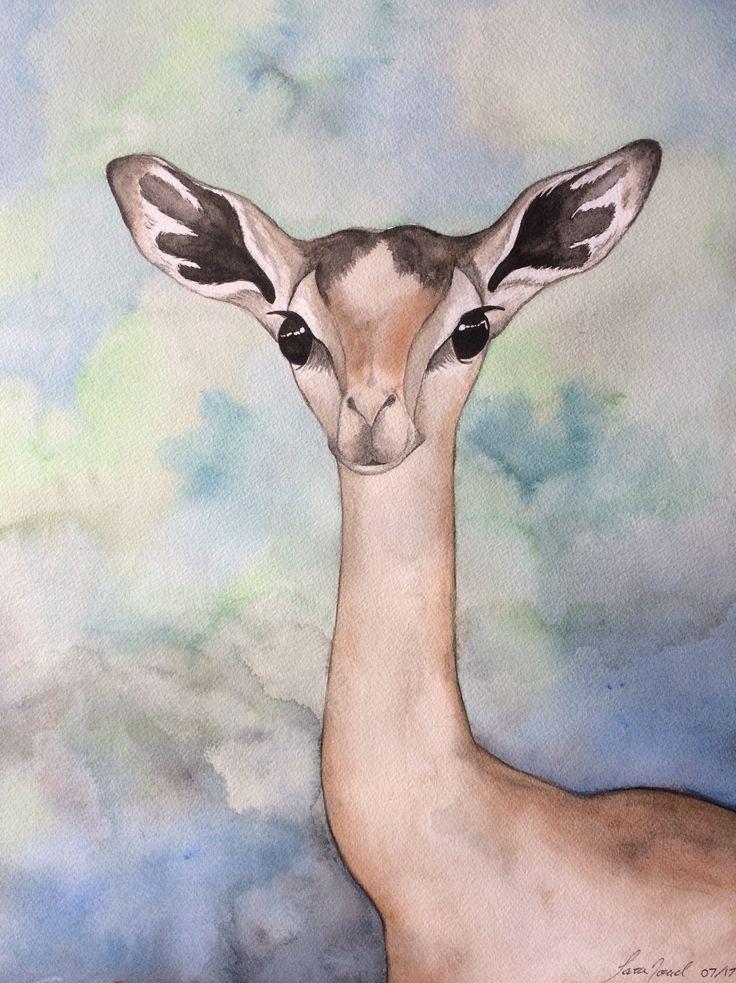 Exotic deer. ~ Sara Noad