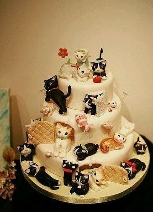 Cake cats.
