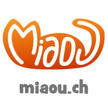Miaou.ch Logo - #concept #graphicdesign by Andrea Bressan