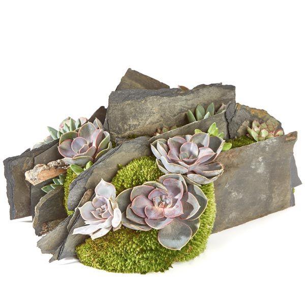 Scherven & Planten.  Velen van u bezoeken met regelmaat een graf of een herdenkingsplaats van uw overleden dierbaren. Het is dan niet ongebruikelijk om bloemen of planten te plaatsen. Gemaakt door Afscheid met Bloemen.