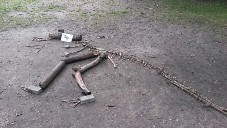 Dinosaurus skelet gemaakt met de kinderen van takken, stenen ed