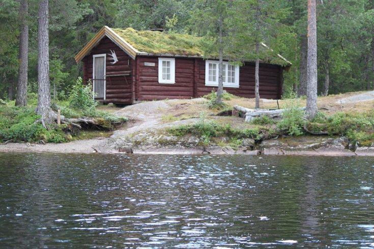 Cabin for rent. Snåsa, Norway. www.inatur.no/hytte/50f3d6e7e4b0a76bd875d1e4/dalvasshytta-snasa-fjellstyre | Inatur.no