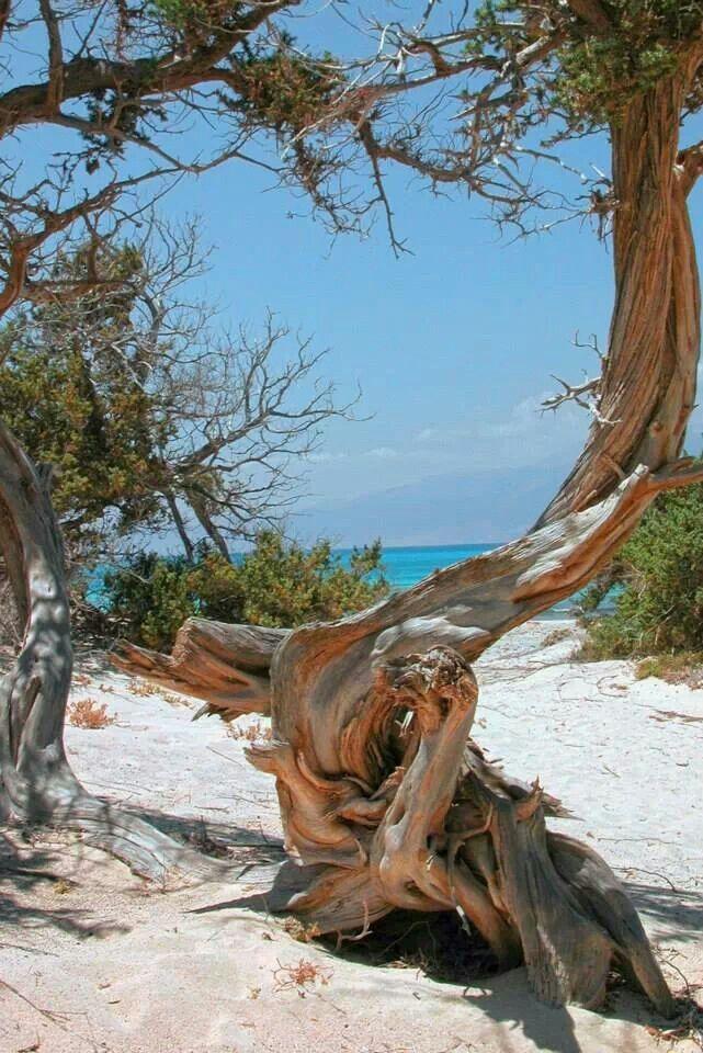 Chryssi islet