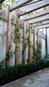 The bold pergola adds structure and interest to the space
