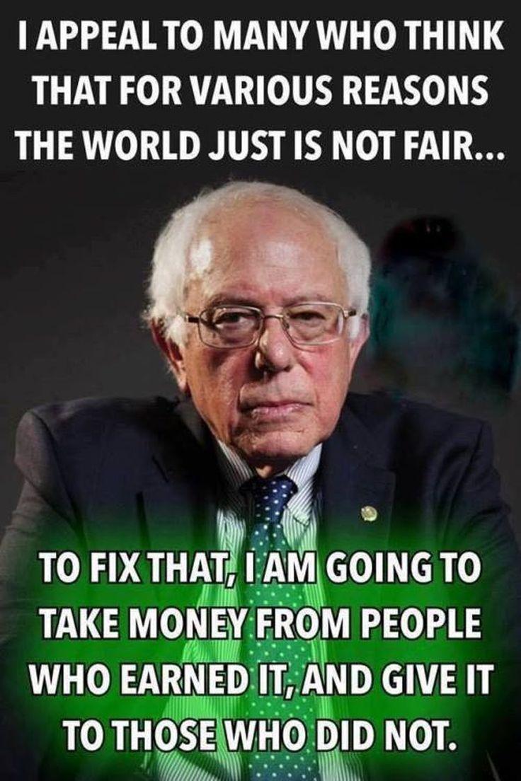 ada6ddf49a0de1b8fc986ec91462af75--stupid-liberals-liberal-democrats.jpg