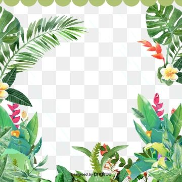 Millions Of Png Images Backgrounds And Vectors For Free Download Pngtree Summer Plants Plant Illustration Flower Clipart