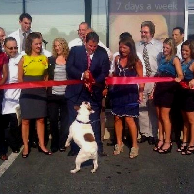 33 Best Ribbon Cutting Ceremony Images On Pinterest Band