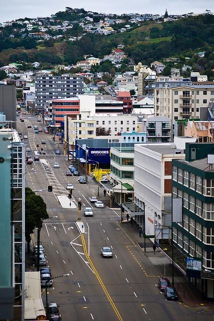 Taranaki St., Wellington, New Zealand  went up this every day on my way to work!