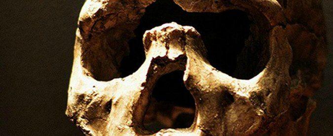 Homo Sapiens scoperti fossili più antichi: ha 100mila anni in più di quello che si ipotizzava - Il Fatto Quotidiano