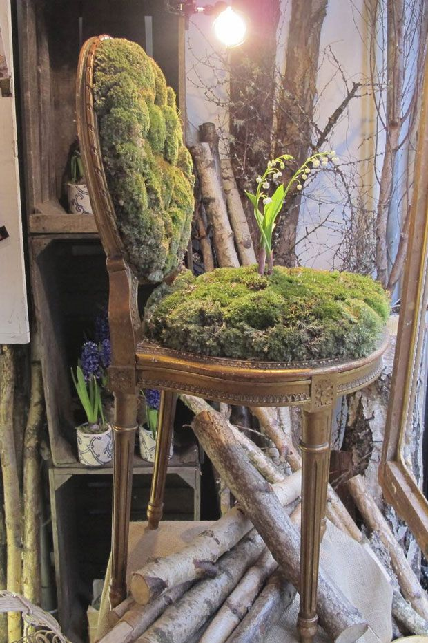 Window display using moss as a seat covering at Bloomsbury's Flowers on Great Queen Street/Londodn