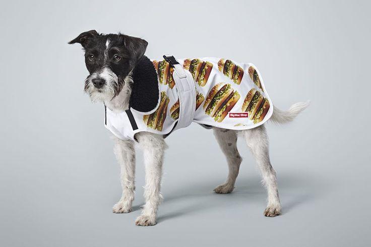 BigMac Dog Coat. It's not just you that wants to enjoy the hamburger of hamburgers. Now your dog can too! #dog #bigmacshop #coat #fashion #pet #doglover