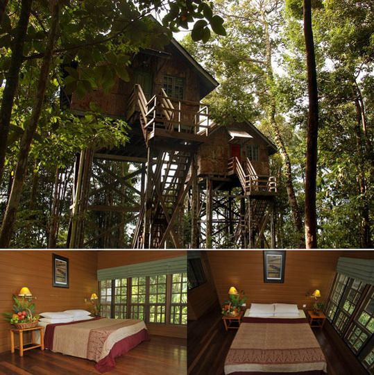 I would love to stay in a treehouse hotel.: Treehouse Hotels, Camps Treehouse I, Treehouse Happy Places, Tree Houses, Apartment Therapy, Treehouseshappi Places, Trees House, The Originals, Dreams Coming True