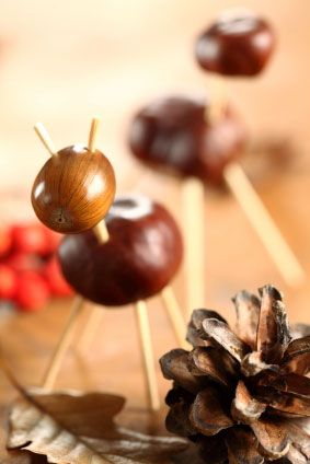 ... be creative with the kids and make fun animals from chestnuts and acorns
